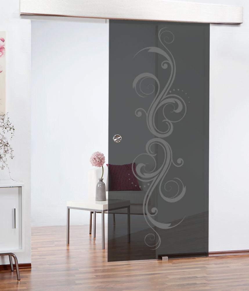 bei raumteilern wird die h ngende schiebet r empfohlen glast ren schiebet ren zimmert ren. Black Bedroom Furniture Sets. Home Design Ideas